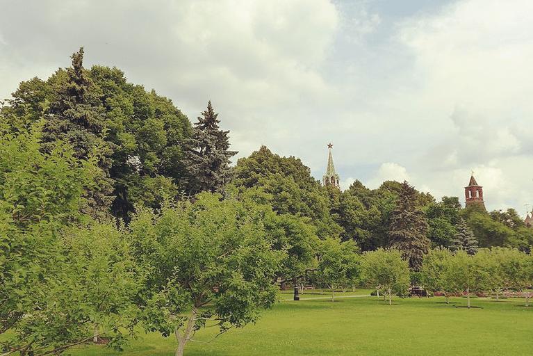 Тайницкий сад в Московском Кремле, 2016 год.
