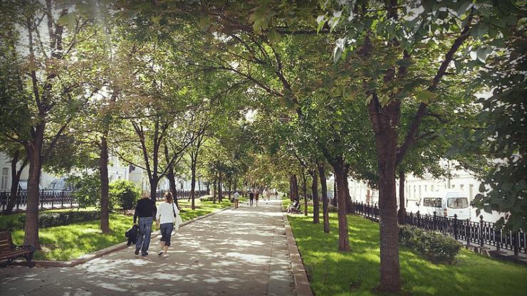 Рождественский бульвар, 2015 год