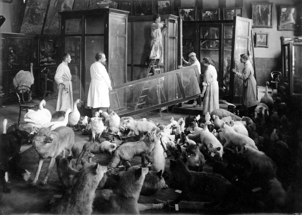 Формирование первых экспозиций, 1930-е годы